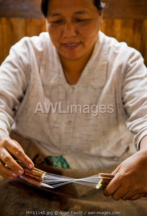 Myanmar, Burma Lake, Inle. A Burmese woman breaks and twists lotus flower stems to remove the fibres.  Very fine cloth has been made from lotus fibres at Lake Inle for 90 years.