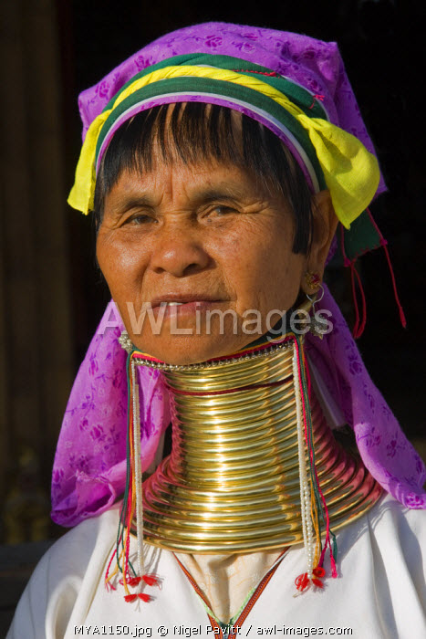 Myanmar, Burma, Lake Inle. Padaung woman belonging to the Karen sub-tribe wearing a traditional heavy brass necklace with twenty-five rings which elongates the neck.