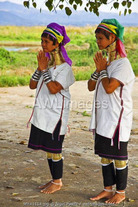 Myanmar, Burma, Lake Inle.  Two Padaung women belonging to the Karen sub-tribe pray at a Buddhist shrine. Their traditional heavy brass necklaces elongate their necks.