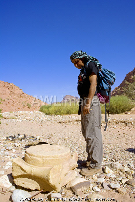 Jordan, Petra.  Present in the numerous river valleys surrounding the ancient Nabatean capital of Petra are numerous site with relics of grand building and further large scale settlements, here a local guide examines to remnants of a large column base lying in a dry river bed.