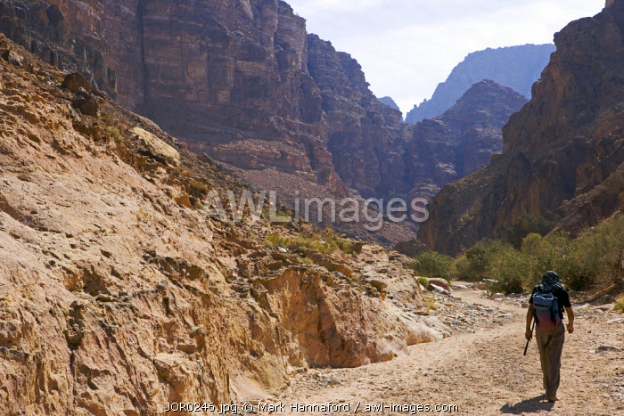 Jordan, Shara Mountains.   The arid valleys leading from the central plateau towards the Dead Sea Valley provide life sustaining water and excellent trekking routes through the otherwise impassible mountain barrier.