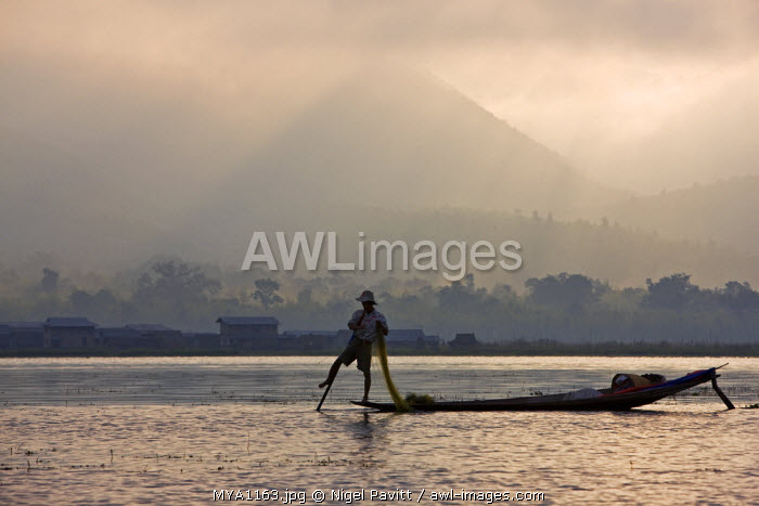 Myanmar, Burma, Lake Inle. An Intha fisherman with traditional fish trap uses an unusual leg-rowing technique to propel his flat-bottomed boat across the lake while standing.