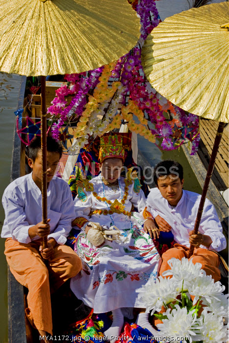 Myanmar, Burma, Lake Inle. A young novitiate shaded with golden umbrellas during a ceremony in which the boy is inducted as a novice Buddhist monk.