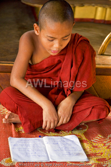 Myanmar, Burma, Lake Inle. A young novice monk learning at a monastery school on Lake Inle.  Much of the early education of young boys takes place in Buddhist monasteries.