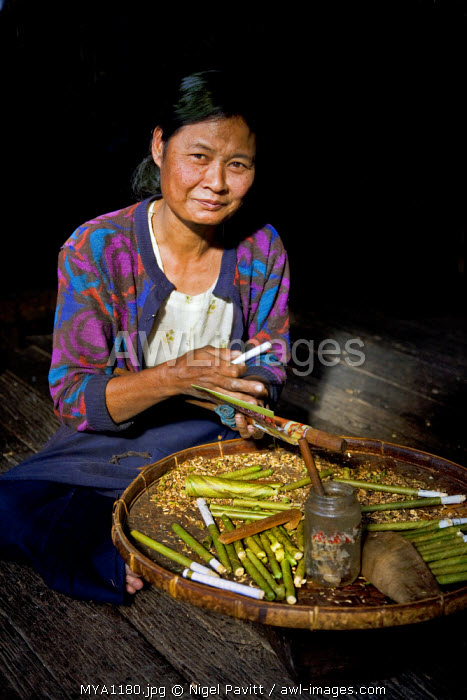 Myanmar, Burma, Lake Inle. An Intha woman making cheroots at her home on Lake Inle. They are especially popular among women.