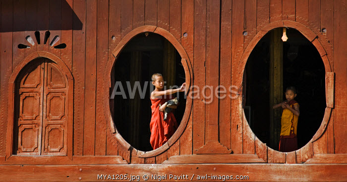 Myanmar. Burma. Nyaung-shwe. Young novice monks at the oval windows of the attractive wooden thein or ordination hall of the mid-19th century Shwe Yaunghwe monastery.