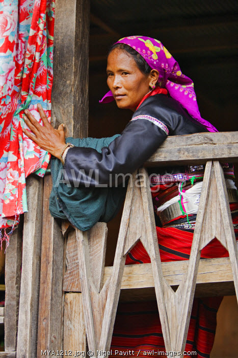 Myanmar. Burma. Wanpauk village. A Palaung woman of the Tibetan-Myanmar group of tribes displays her wealth by wearing broad silver belts around her waist.