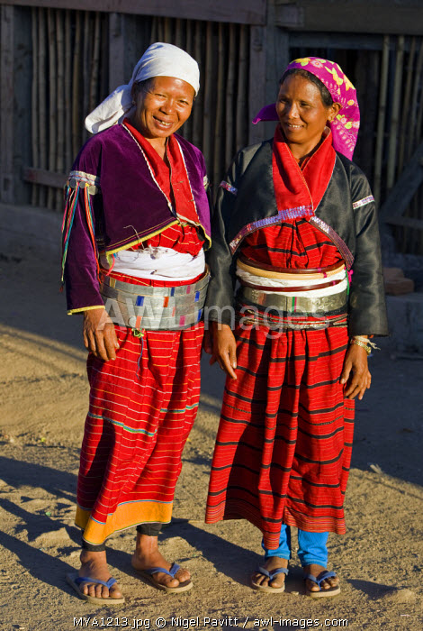 awl-images.com - Myanmar / Myanmar. Burma. Wanpauk village. Palaung women of the Tibetan-Myanmar group of tribes display their wealth by wearing broad silver belts. The poorer families use aluminium.