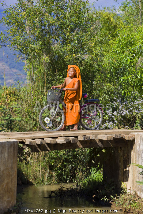 Myanmar, Burma, Pan-lo. A proud young novice monk crosses a wooden bridge with his bicycle near Pan-lo village. The wheels of the bike are decorated with CDs.