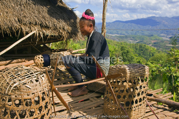 Myanmar, Burma, Pan-lo. A woman of the small Ann tribe spools cotton thread for weaving on the first floor bamboo platform of her home.