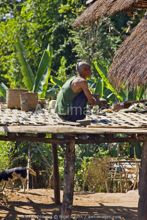 Myanmar, Burma, Pan-lo. A man of the small Ann tribe on the first floor bamboo platform of his home. The Ann believe in evil spirits; this man is the village sharman.
