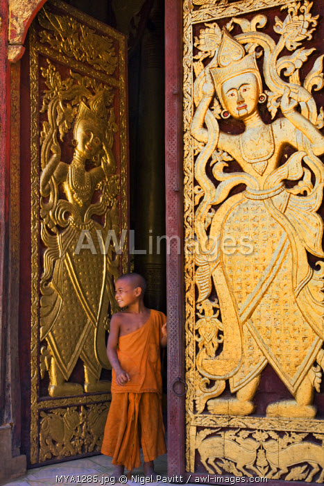 Myanmar, Burma, Wan-seeing.  A young novice monk beside the ornately carved and gilded doors of the beautiful 15th or 16th century Wan-seeing monastery.