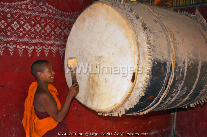 Myanmar, Burma, Wan-seeing.  A novice monk beats the huge drum inside the beautiful 15th or 16th century Wan-seeing monastery.