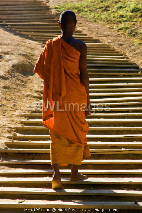 awl-images.com - Myanmar / Myanmar, Burma, Loi pan. A monk in saffron robes walks up a long flight of wooden steps towards the 15th or 16th century Wan-seeing monastery.