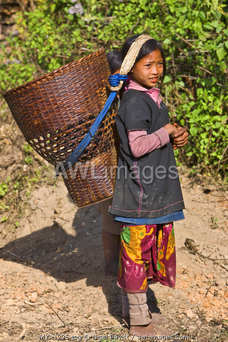Myanmar, Burma, Wan-seeing.  A young Loi girl carrying a large wicker basket at Wan-seeing village.