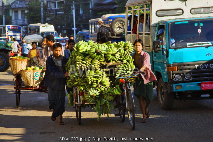 Myanmar, Burma, Yangon. A busy street scene in Yangon with trishaws laden with fruit heading for market.