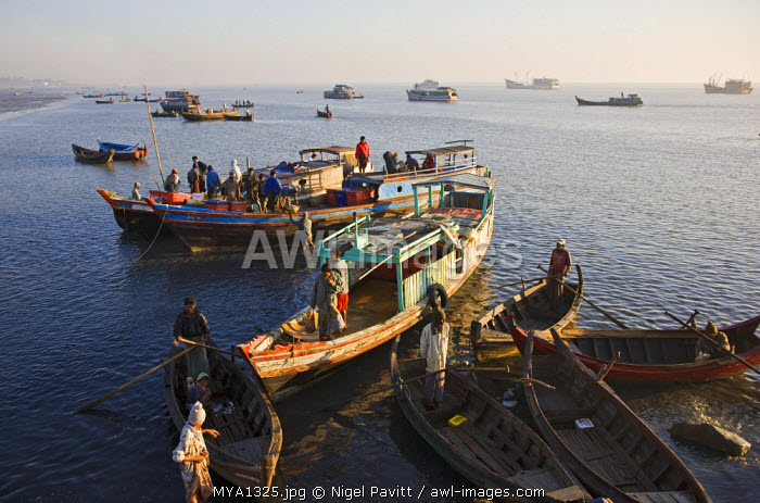Myanmar, Burma, Rakhine State. Fishing boats anchored at Sittwe's busy port.