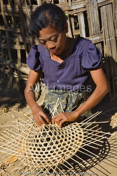 Myanmar, Burma, Mrauk U. A woman skilfully makes the bamboo frame of a conical, wide-brimmed hat which are so popular in the Far East.