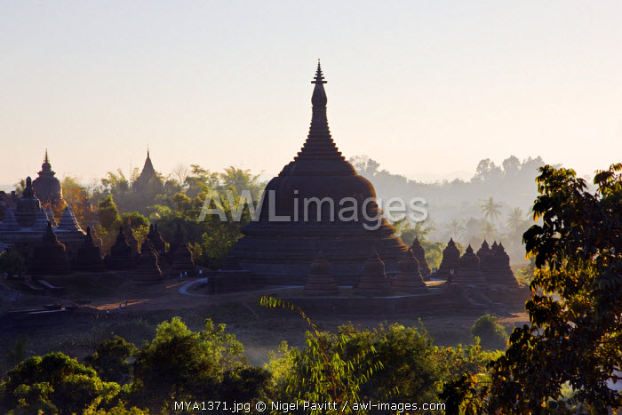 Myanmar, Burma, Mrauk U. Late afternoon sun bathes the historic bell-shaped temples of Mrauk U which were built in the Rakhine style between the 15th and 17th centuries.