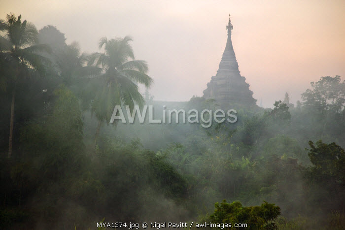 Myanmar, Burma, Mrauk U. Early morning mist shrouds an historic temple of Mrauk U built in the Rakhine style between the 15th and 17th centuries.