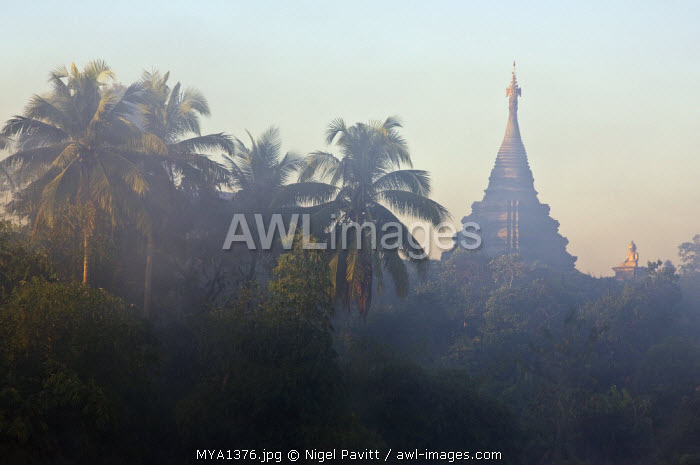 Myanmar, Burma, Mrauk U. Early morning mist shrouds an historic temple of Mrauk U which was built in the Rakhine style between the 15th and 17th centuries.