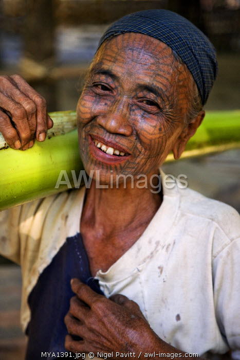 awl-images.com - Myanmar / Myanmar, Chin State, Panbaung. A Chin woman with tattooed face carries home the stem of a banana tree. It was customary in the past for girls to be tattooed at 14 or 15 years old.