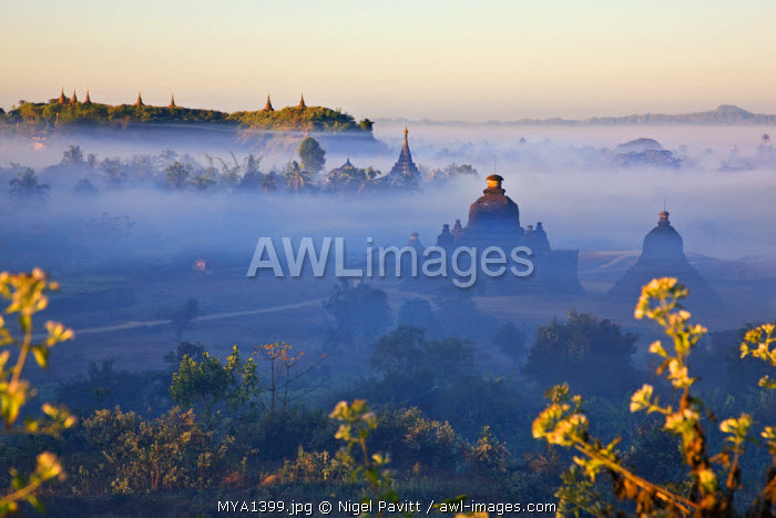 As the sun rises, the early morning mist shrouding the historic temples of Mrauk U begins to lift.