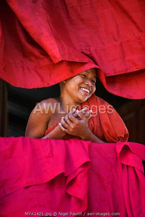 awl-images.com - Myanmar / Myanmar, Burma, Rakhine State, Sittwe. A young novice monk at the Pathain Monastery where 210 monks live. 10% of the country's population are monks or nuns and live off the community.
