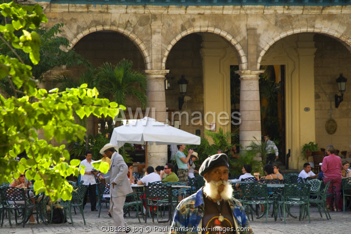 Cuba, Havana. El Patio, Casa del Marques de Aguas Claras, Plaza de la Catedral, Havana