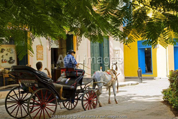 Cuba, Havana. Horse and carriage on Cale Mercaderes, Havana