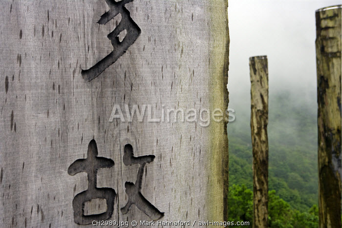 China, Hong Kong, Lantau Island. The Wisdom trail.  The outdoor wooden version of the 260-word prayer is on 38 wooden rectangular beams or obelisks. The beams are in the shape of a figure eight to represent infinity. The Heart Sutra is on the beams. The Chinese calligraphy is a work of art.