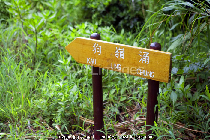 China, Hong Kong, Lantau Island.  Walking and trekking on the Lantau Trail, the footpaths are very well made and well waymarked.