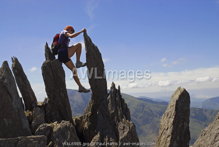 North Wales, Snowdonia. Active woman walking and climbing in the Ogwen Valley, Snowdonia, North Wales. (MR)