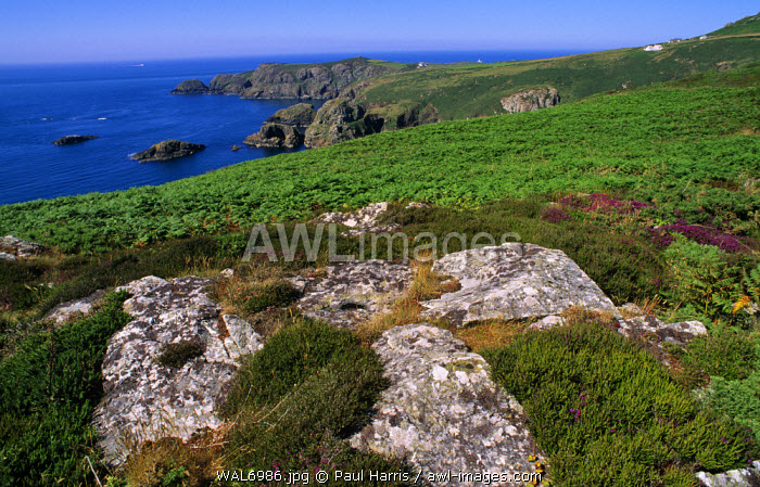 Wales. St David's Head, Pembrokeshire National Park