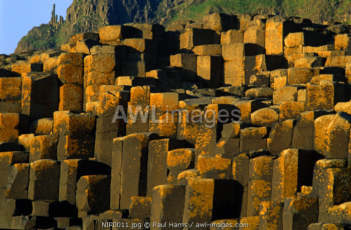 Northern Ireland, County Antrim. The Giant's Causeway, County Antrim, Northern Ireland, UK. The Giant's Causeway is a World Heritage site, National Nature Reserve and Northern Ireland's premier tourist attraction. The site and 15 mile of footpaths along the Causeway Coastline are owned and maintained by the National Trust