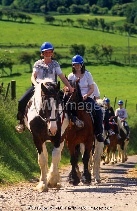 Northern Ireland, Co Antrim. Horse riding at Water Top Farm, Ballycastle, Co. Antrim, Northern Ireland