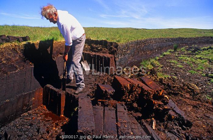Northern Ireland, Co. Antrim. Hand cutting peat bog turf, Ballycastle, Co. Antrim, Northern Ireland, U.K.