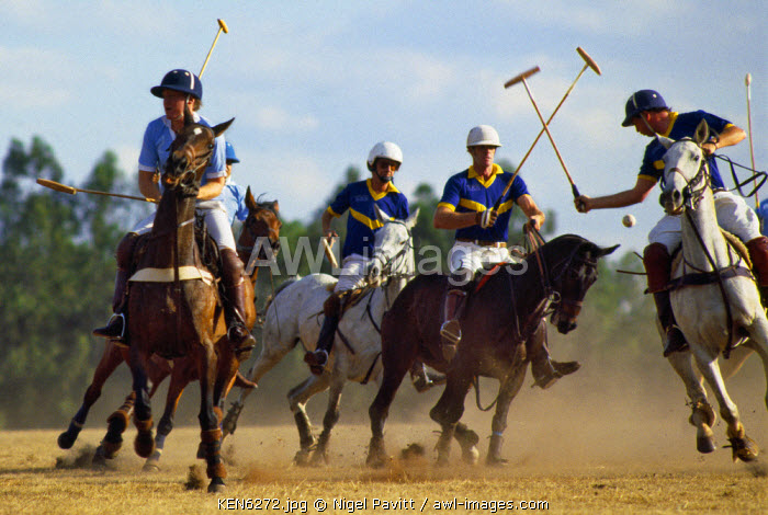 awl-images.com - Kenya / A polo match at Nairobi�s polo ground on the outskirts of the city.