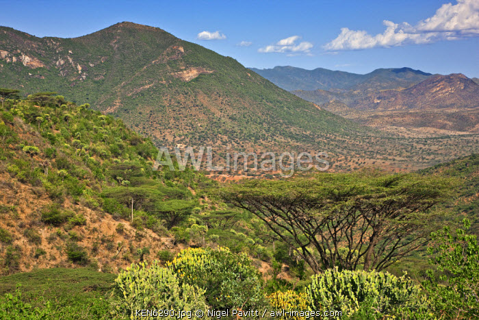awl-images.com - Kenya / A view of the mountains in the semi-arid bush country from the foothills of Mount Nyiru in north Samburuland.