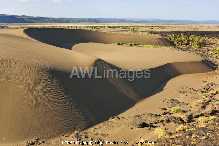 awl-images.com - Kenya / A large barchan dune on the edge of the Suguta Valley.