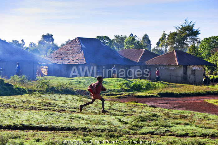 awl-images.com - Kenya / Kenya, Kapsabet District. An early morning rural scene with a young boy running to school.