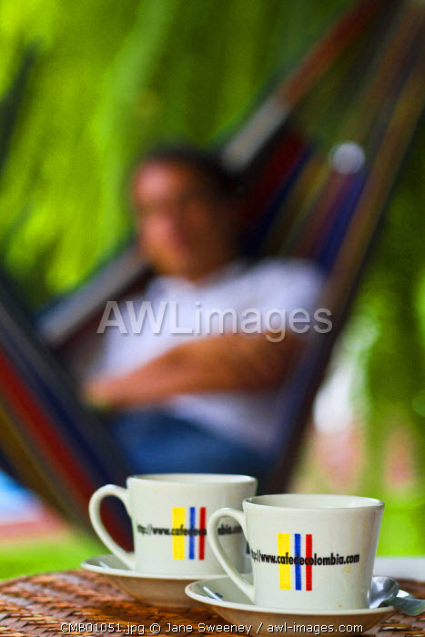 Colombia, Caldas, Manizales, Hacienda Venecia, Coffee cups on table with man relaxing in a hammock in background