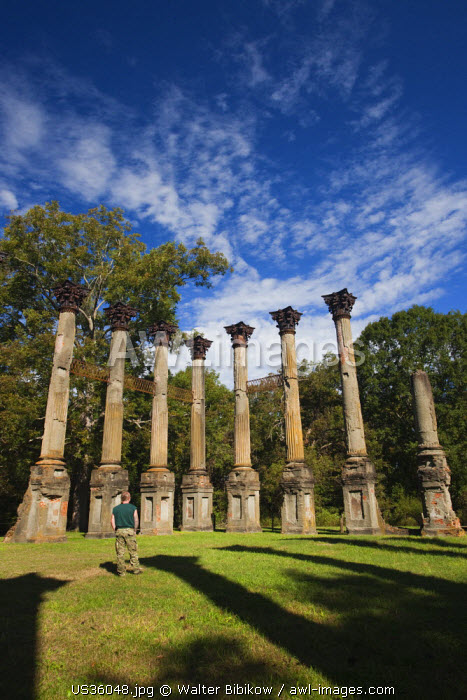 USA, Mississippi, Port Gibson-area, Windsor Ruins, standing columns from former plantation house
