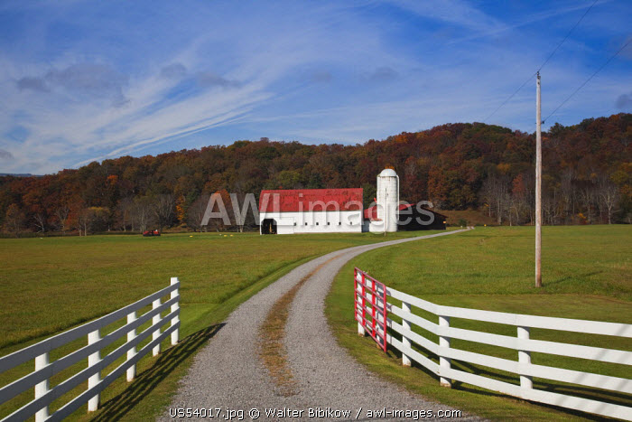 USA, West Virginia, Arbovale, Monongahela National Forest, old barn