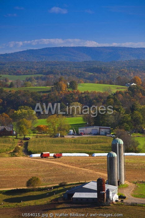 USA, West Virginia, Rennick, high angle view of farm