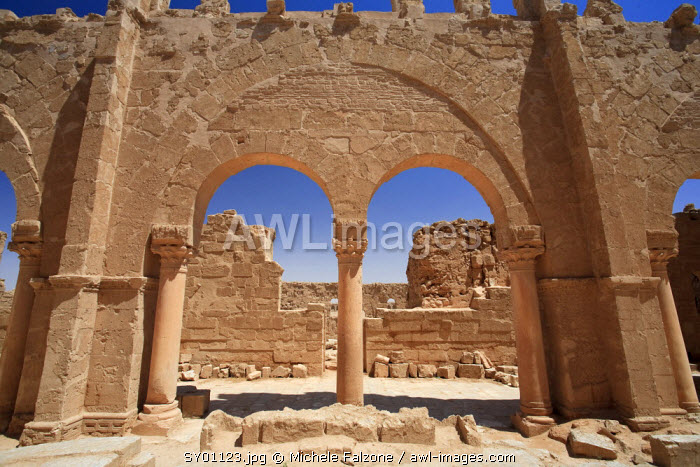 Syria, Central Desert, ruins of ancient Rasafa Walled City (3rd Century AD), Basilica of St. Sergius
