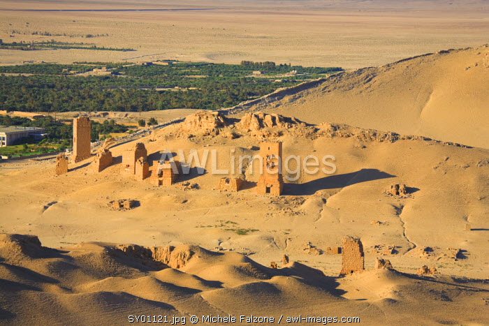 Syria, Palmyra Ruins (UNESCO Site), Valley of Tombs, Burial Chambers towers