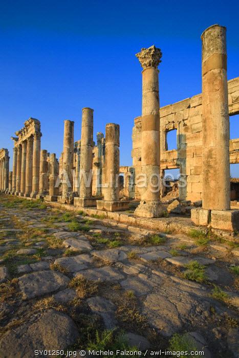 Syria, Apamea (Afamia) Archaeological Site (founded 3rd Century BC), 2km Cardo (Roman Colonnade Main Street)