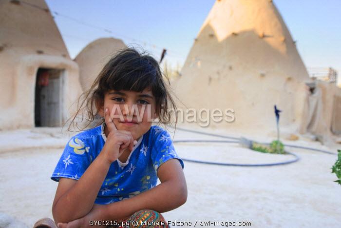Syria, Hama surroundings, the Beehive Village of Sarouj, made of mud dwellings