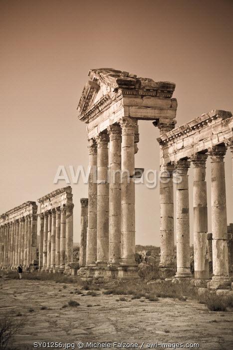 Syria, Apamea (Afamia) Archaeological Site (founded 3rd Century BC), 2km Cardo (Roman Colonnade Main Street) and Nymphaeum (Monumental Fountain)